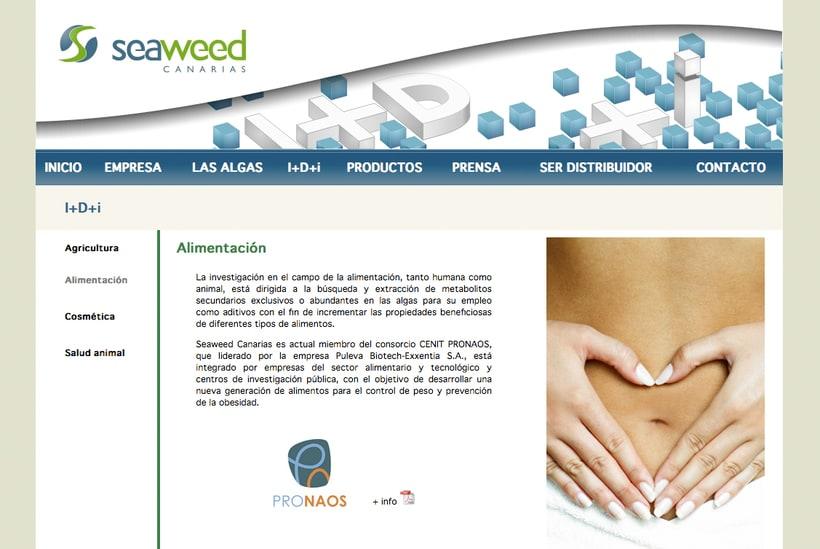 Website Seaweed Canarias -1