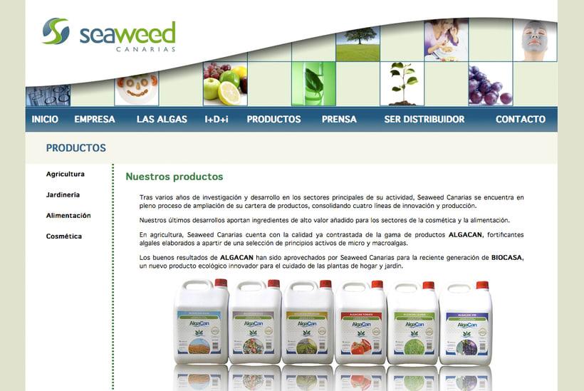 Website Seaweed Canarias 1