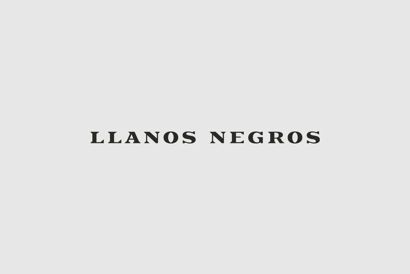 Llanos Negros 2