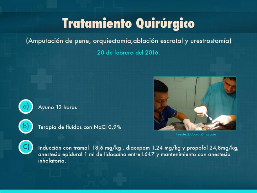 Presentación Copyright © Todos los Derechos Reservados -1