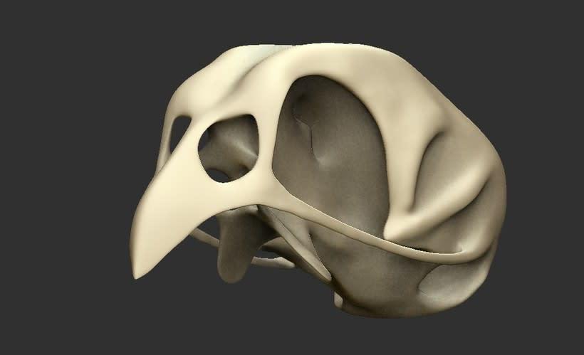 Cráneo de Priolo 2