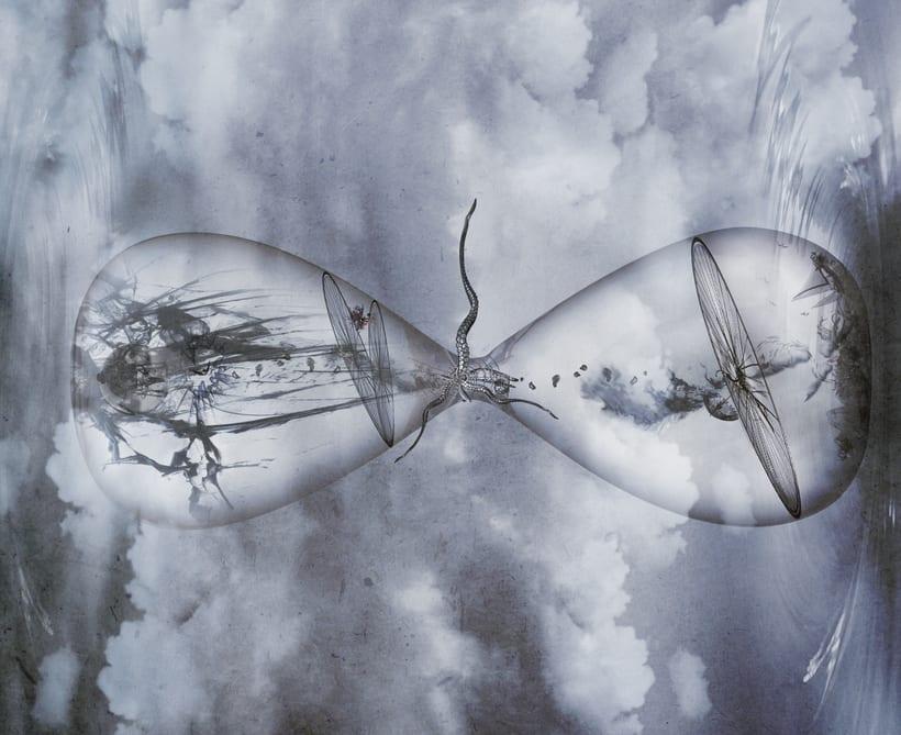 Transparencia  -1