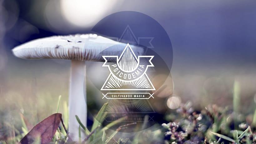 Cultivando magia -1