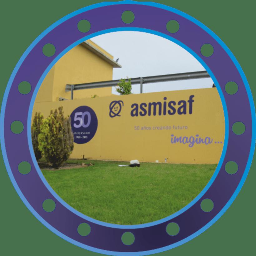 Rotulación muro de ASMISAF 8