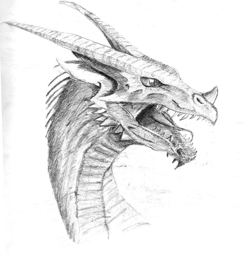 Ilustración de bustos de dragón 0