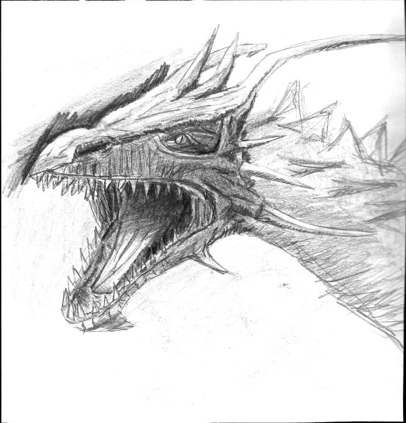 Ilustración de bustos de dragón 1