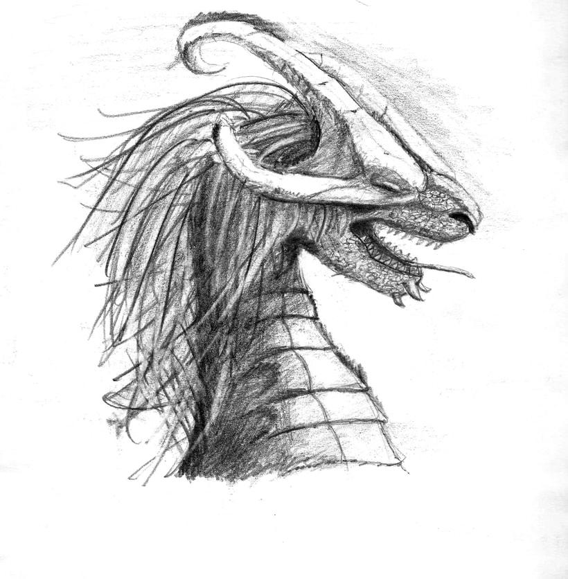 Ilustración de bustos de dragón 3