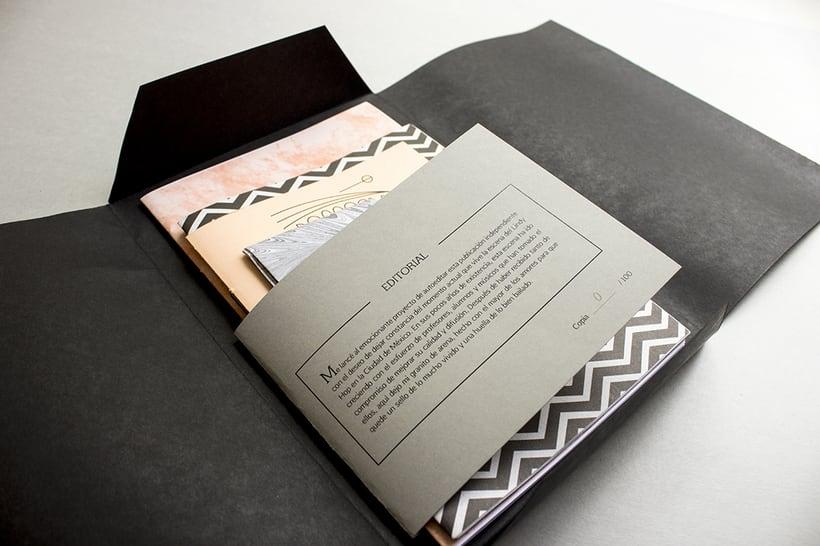 MEX Step / Mi Proyecto del curso: Diseño e ilustración de un Fanzine 1