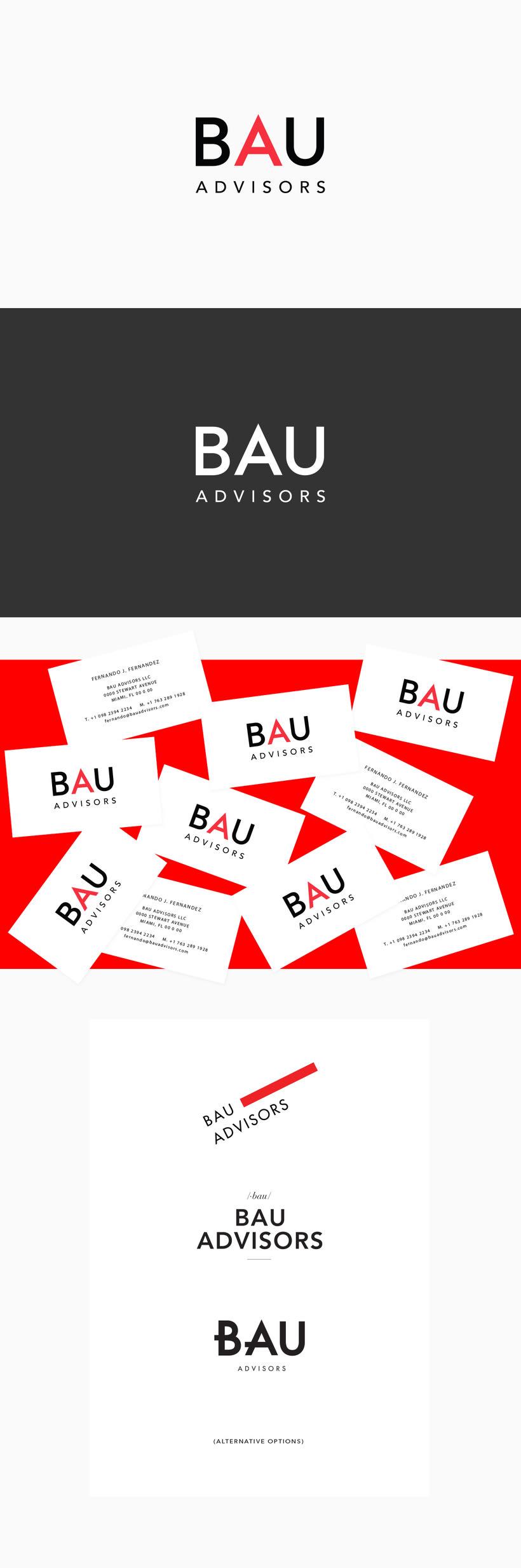 Bau Advisors Logo 0