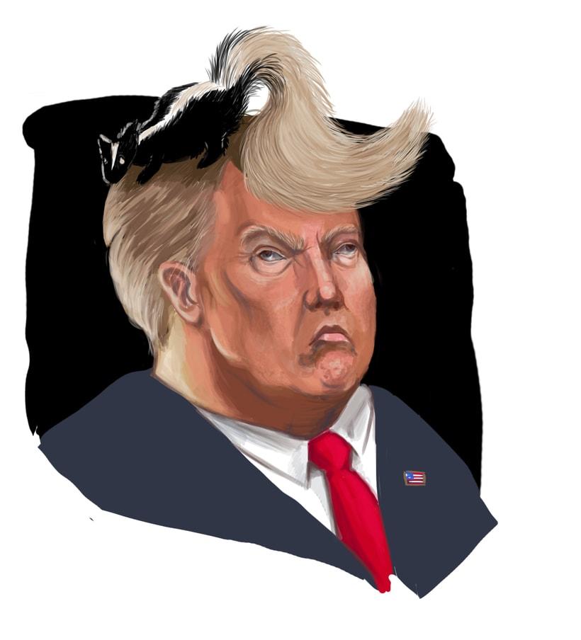 caricatura política domestika
