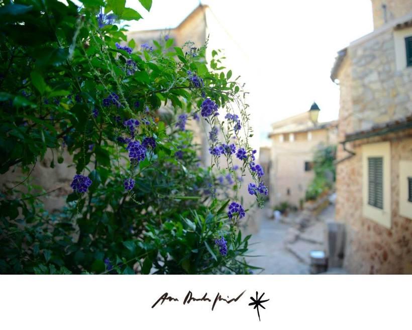 Illa* Mallorca* 36