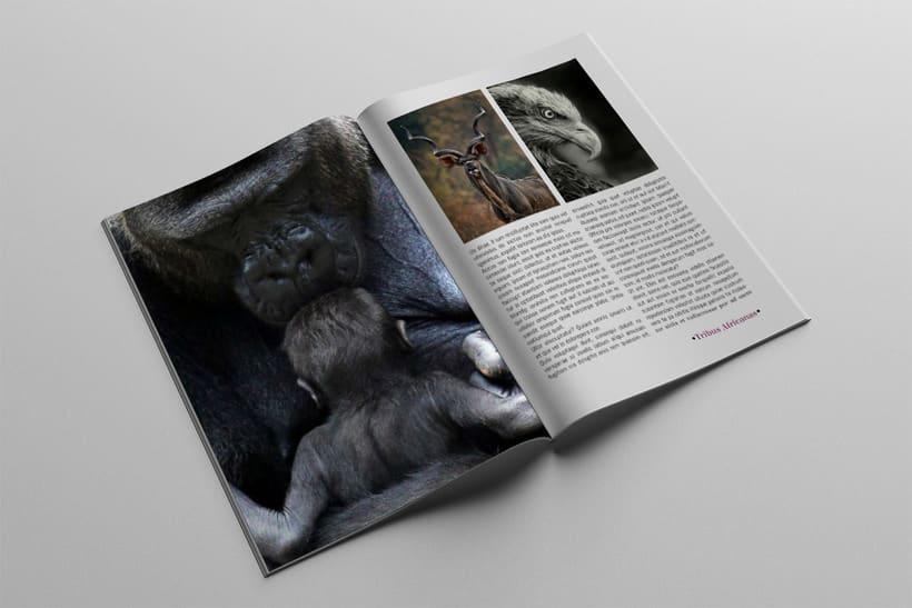 Diseño Editorial Tribus Africanas. 8