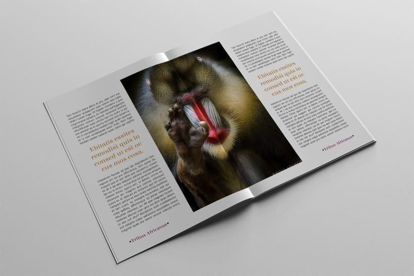 Diseño Editorial Tribus Africanas. 9