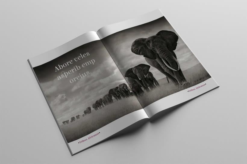Diseño Editorial Tribus Africanas. 10