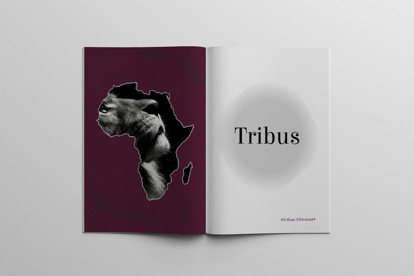 Diseño Editorial Tribus Africanas. 11