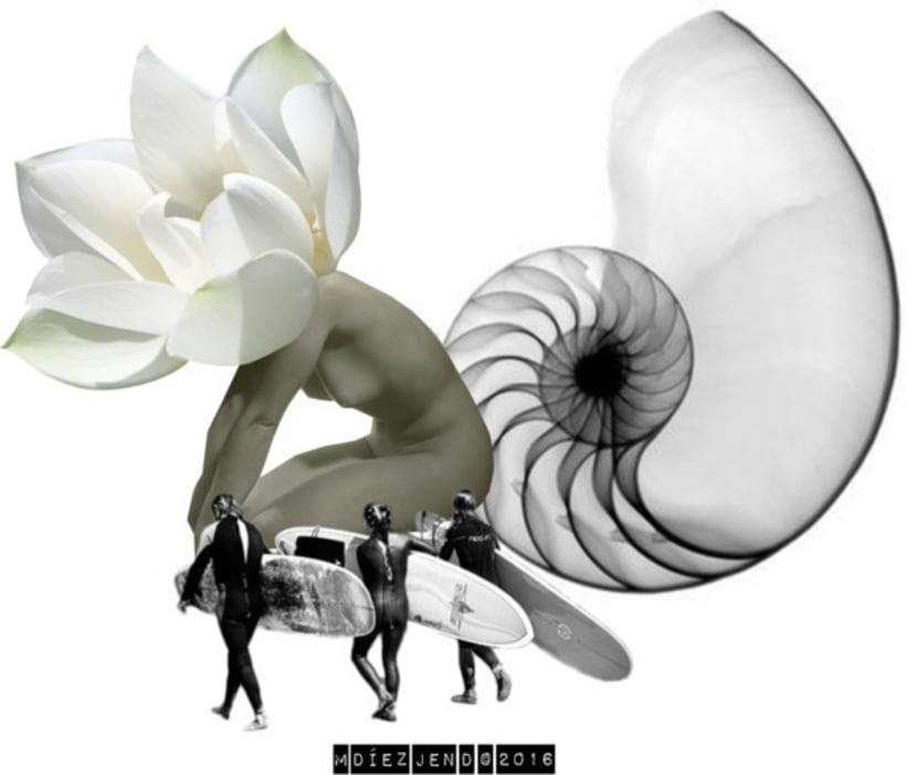 """""""Contra la uniformidad, la diversidad. Contra las restricciones, el fanatismo por la ausencia de límites. Contra el igualitarismo, la jerarquía. Contra las espinacas, caracoles"""" — S. Dalí 0"""