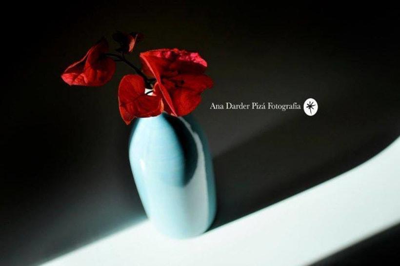Proyecto Personal_Elogio de la sombra* 2