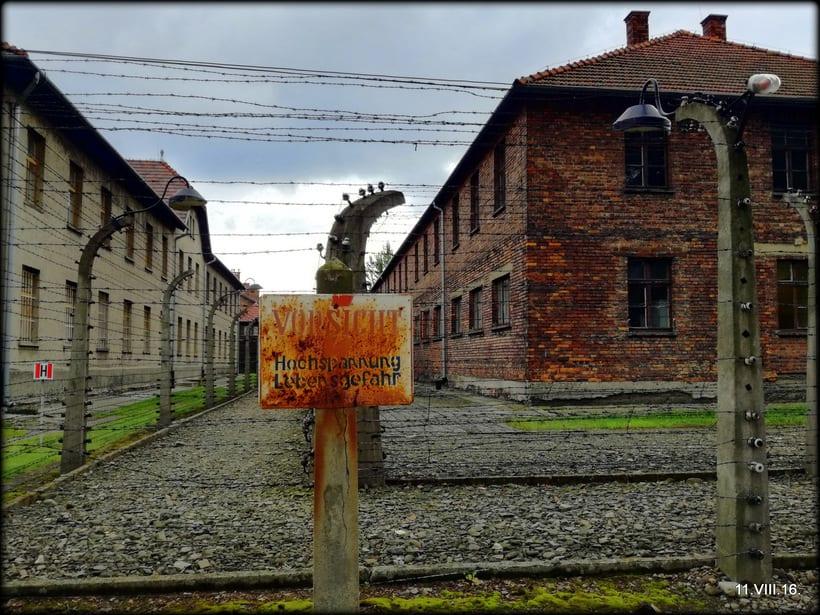 Crónicas  Polacas VI: Un día en Cracovia 33