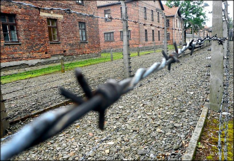 Crónicas  Polacas VI: Un día en Cracovia 34