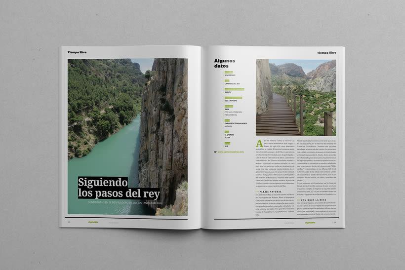 Digital Biz Magazine 11
