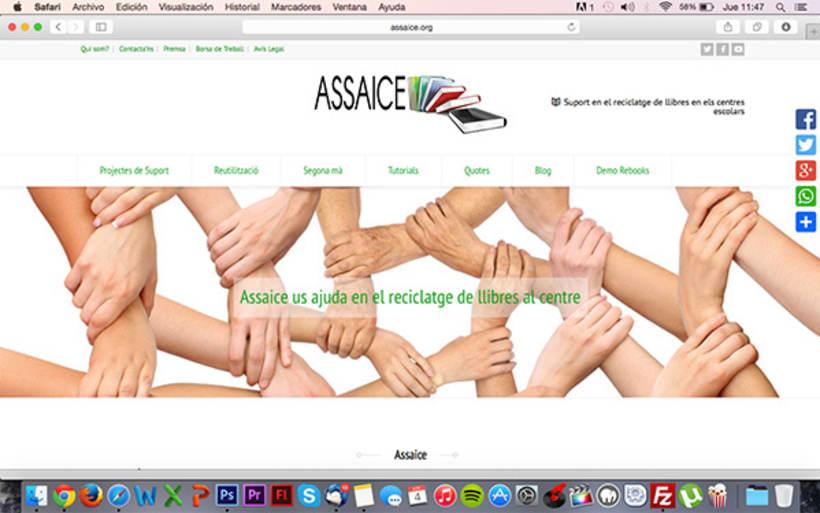 Diseño y desarrollo WEB - Assaice -1