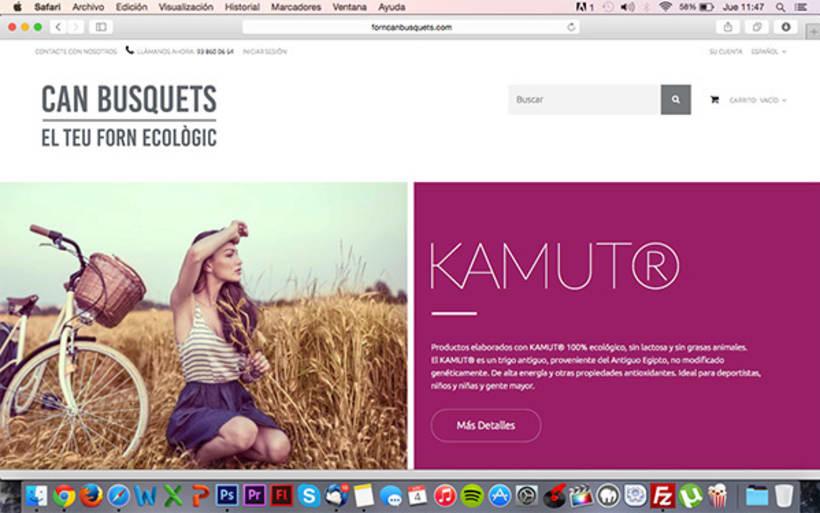 Diseño y desarrollo WEB - Can Busquets -1