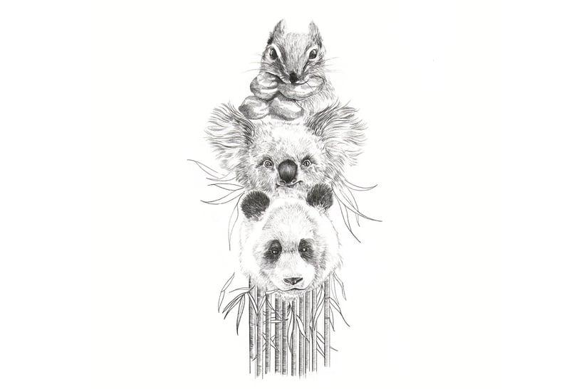 Animal Totem I -1