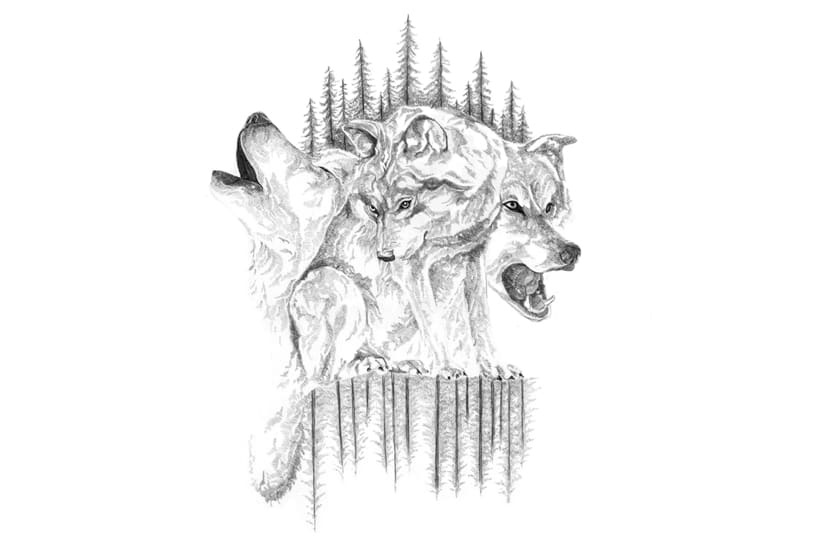 Wolves  -1