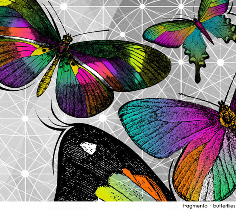 Butterflies 3