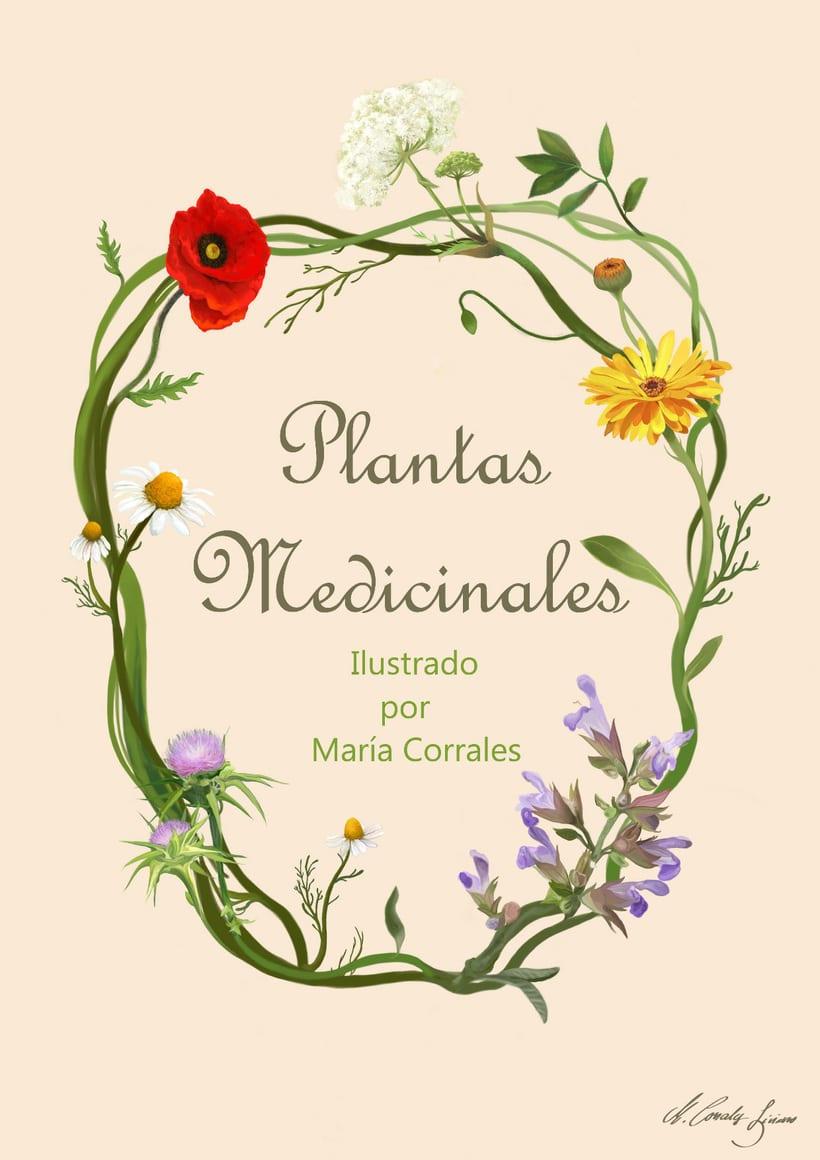 Plantas medicinales 0