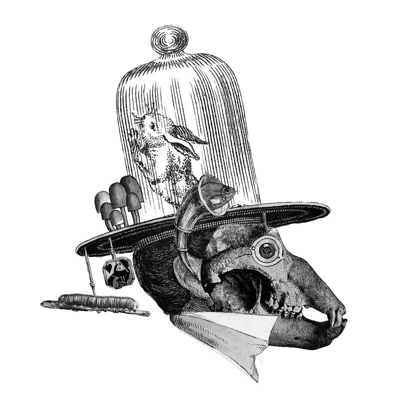 Jan Svankmajer — Special Edition 5