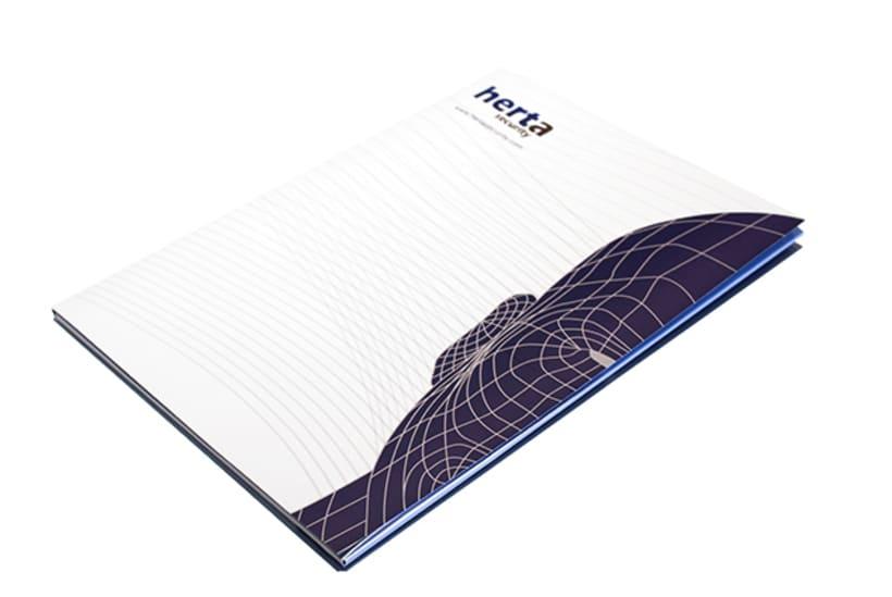 Graphic design | Corporate material. Herta Security 0