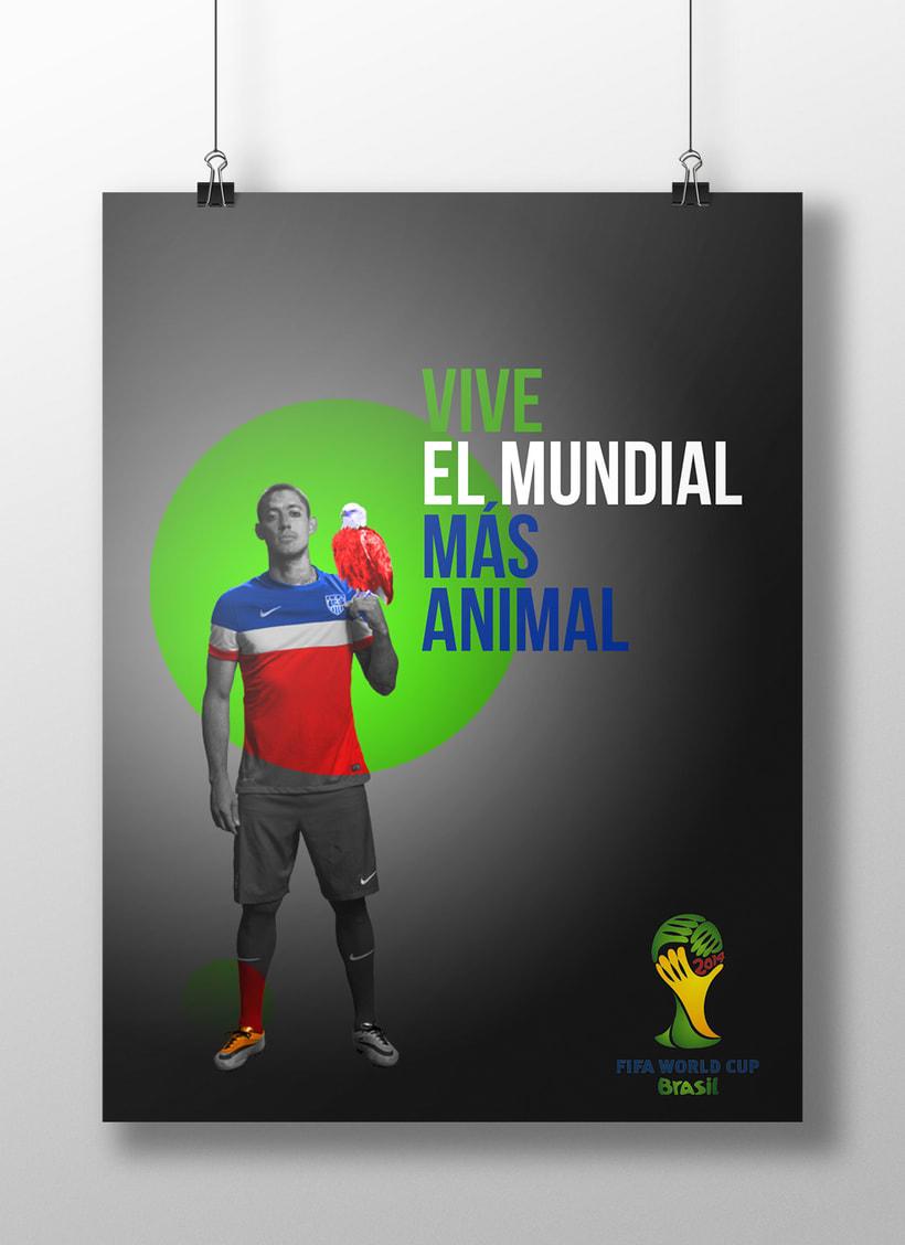 Carteles FIFA World Cup Brasil 2014 3