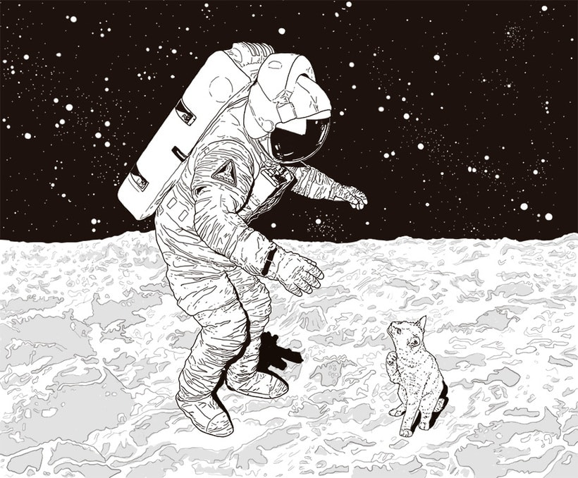 Cat on the moon 0