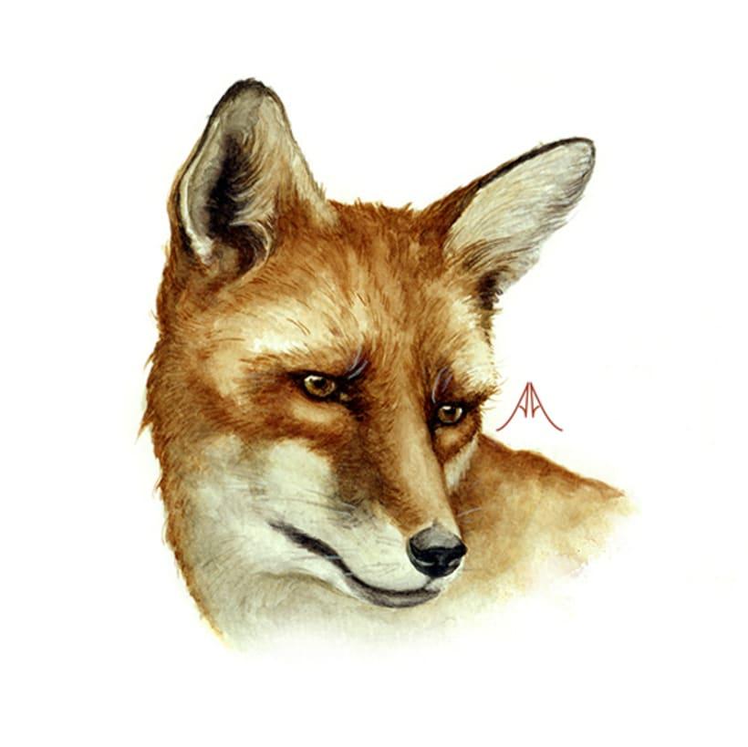 Animals in danger (facing extinction) 1
