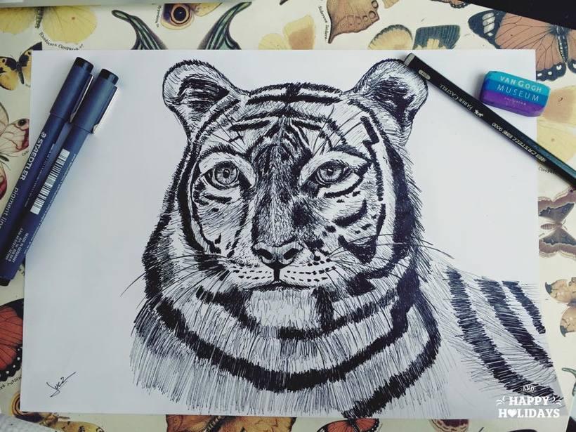 Proyectos a tinta 28