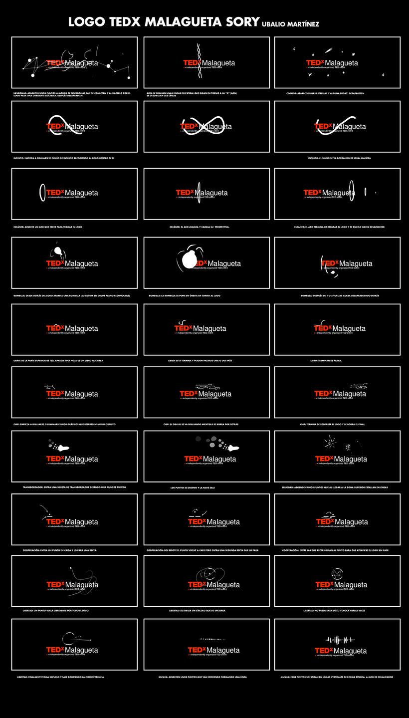 TEDx Málaga 11