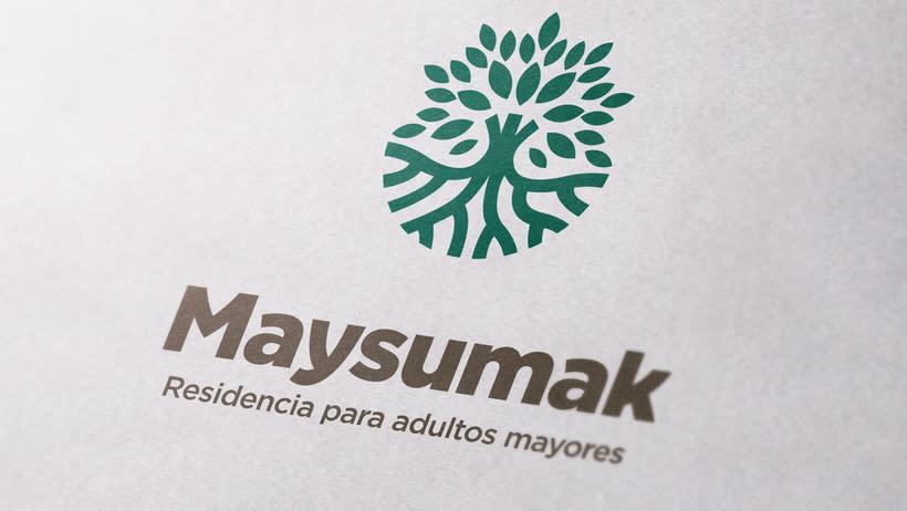 Maysumak 10