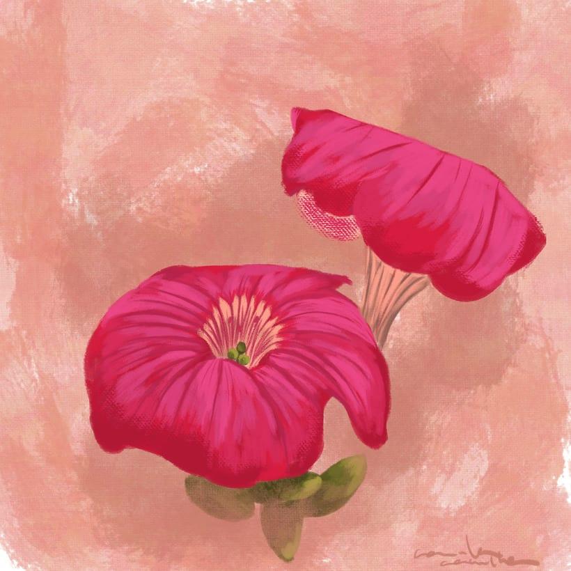 Flores: Estudio de color. 0