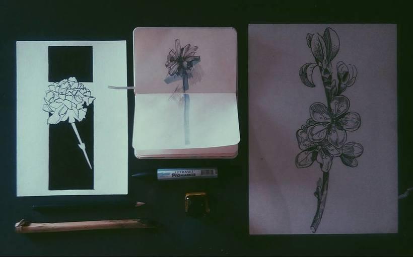 Estudio flores. 0