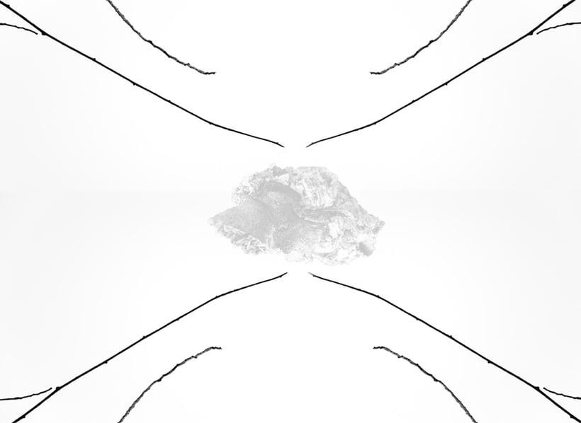 El Camino de la Dualidad 0