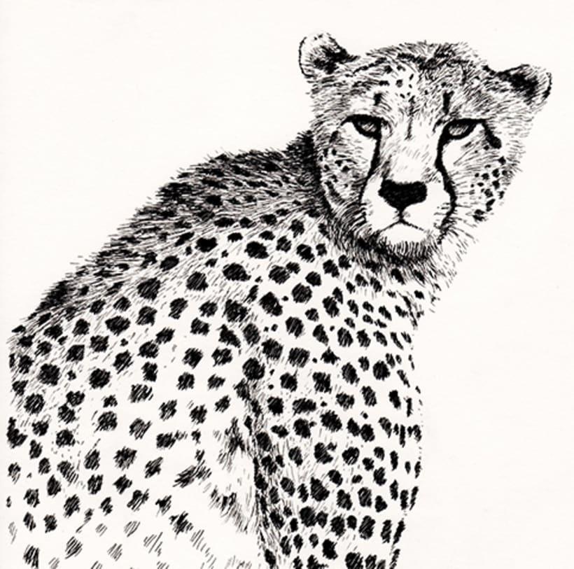 ANIMALS INK 0