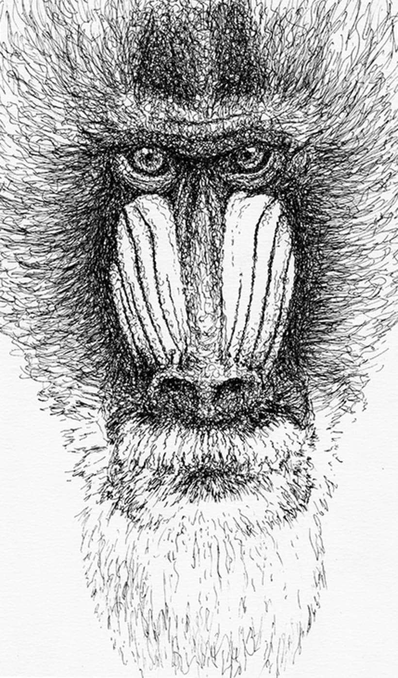ANIMALS INK 3