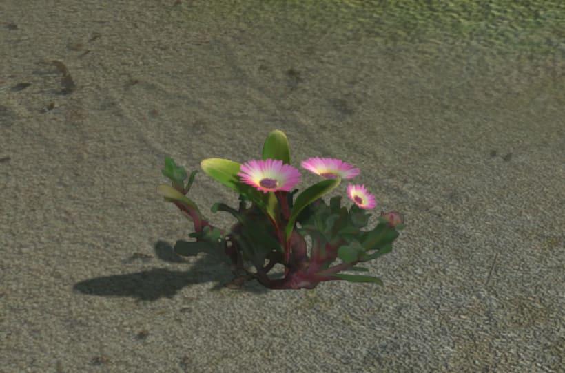 Vegetation Models 4