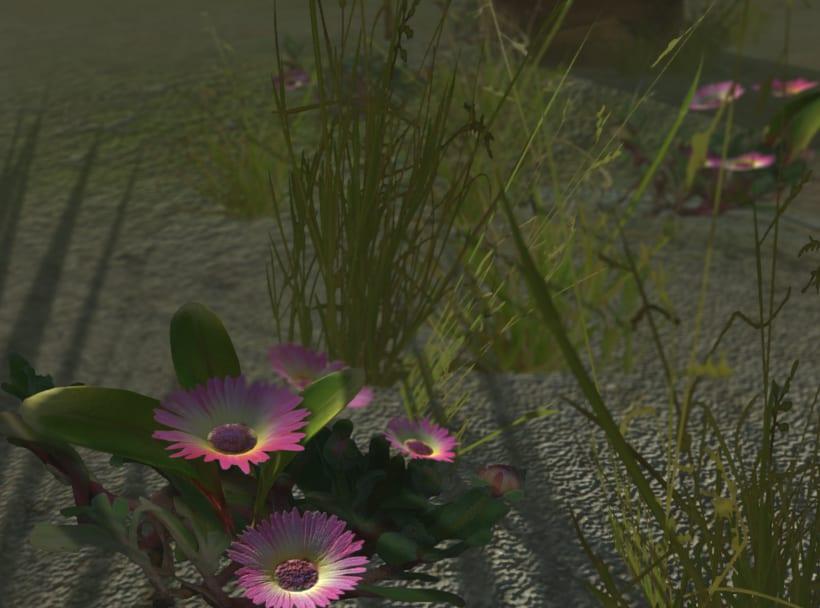 Vegetation Models 1