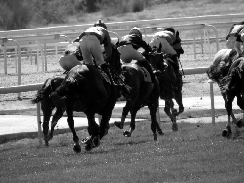 Horseraces 1
