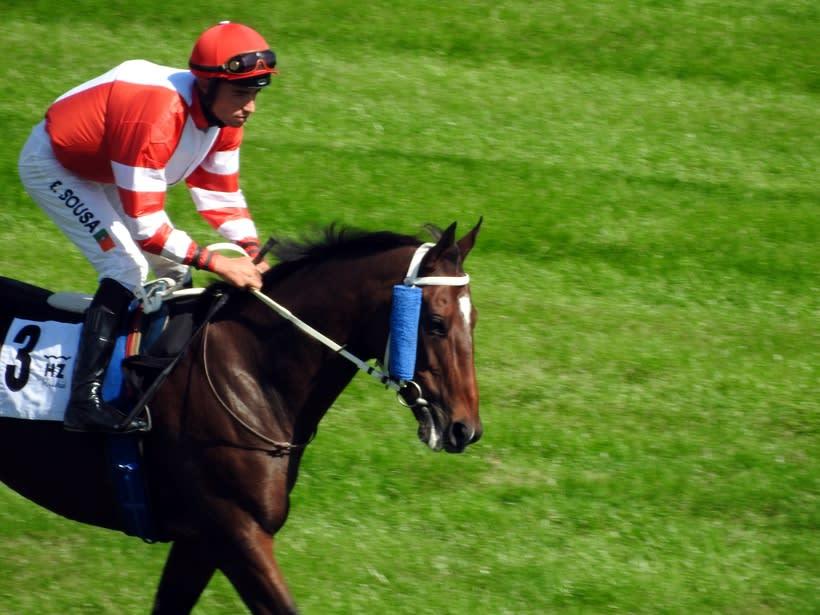 Horseraces 3