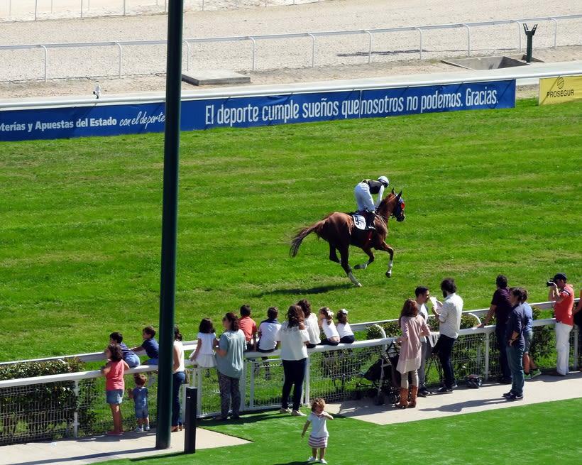 Horseraces 4