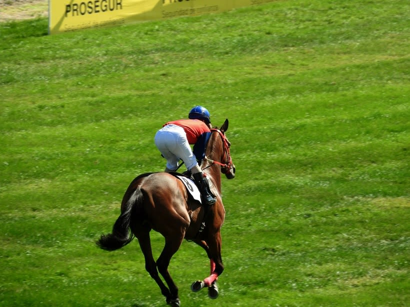Horseraces 6