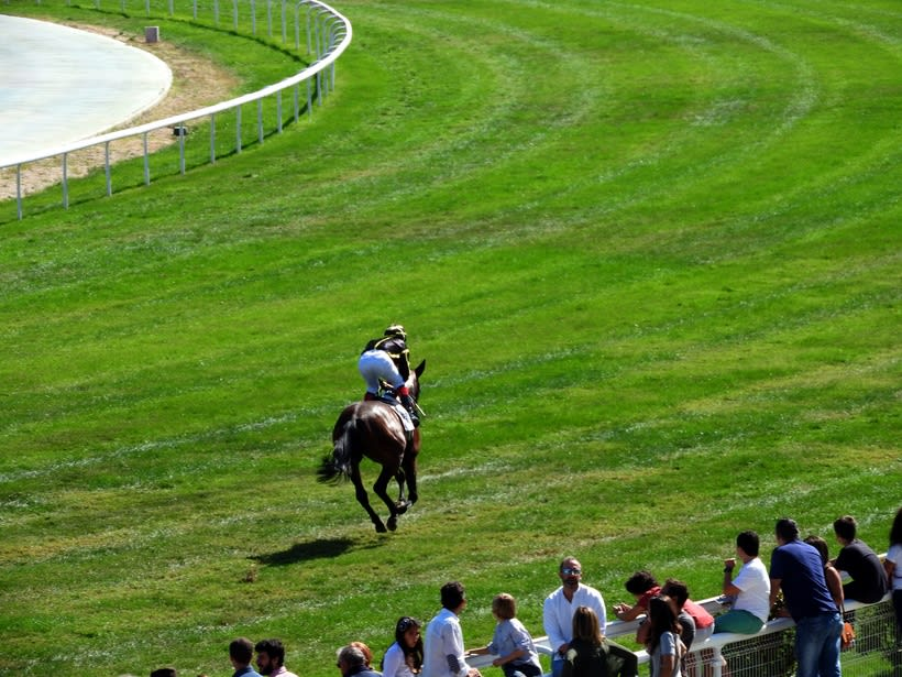 Horseraces 7